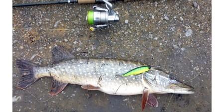 <Рыбалка на щуку весной на спиннинг, в половодье.